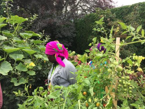 South African farmer Josephine Mathebula on the Victoria Urban Food-Garden Tour