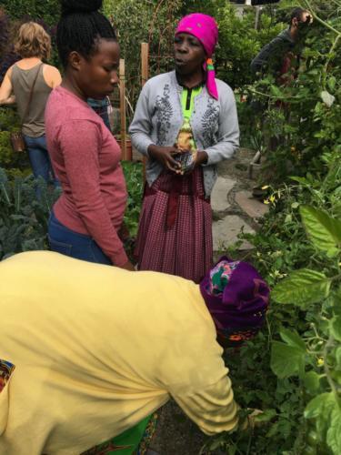 South African interpreter Basani Ngobeni and farmer Josephine Mathebula visit a Victoria home food garden