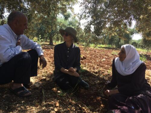 Project director Elizabeth Vibert meets with Fatima O and her husband in their olive grove
